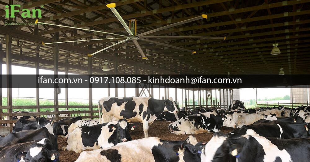Các loại quạt chuyên sử dụng cho nông nghiệp