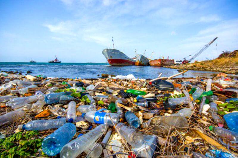 Rác thải nhựa, nilon rất khó phân hủy