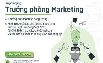 Công ty CP Quạt Việt Nam iFan Tuyển Dụng Trưởng phòng Marketing